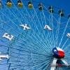 2008_TX_Fair_MG_5048